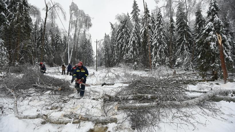 ВДмитровском районе Московской области восстановили энергоснабжение четырех населенных пунктов