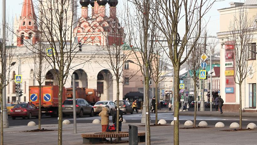 Собянин пригласил жителей столицы принять участие вакции «Миллион деревьев»
