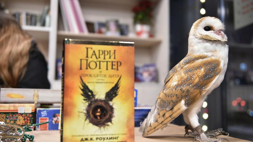 Осенью выйдут две новых книги омире Гарри Поттера