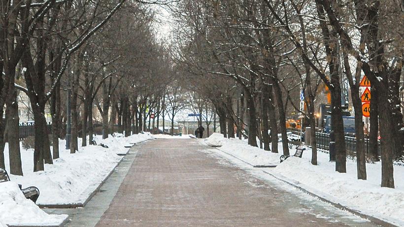 Сквер Мстислава Ростроповича появится в российской столице в будущем 2017 году