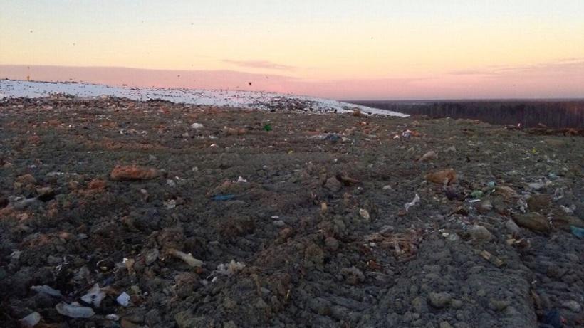 Начальник  крупнейшего подмосковного мусорного полигона отправлен под домашний арест