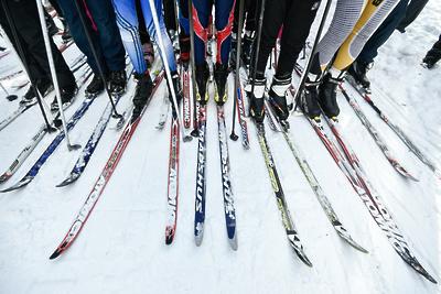 Кубки и медали вручили победителям лыжного забега в Королеве