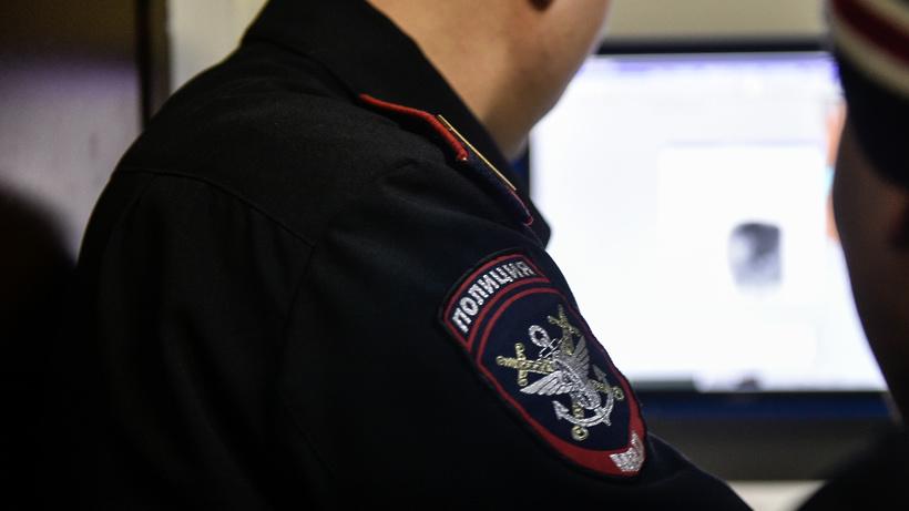 Полиция начала  проверку по факту драки между девочками в Подольске