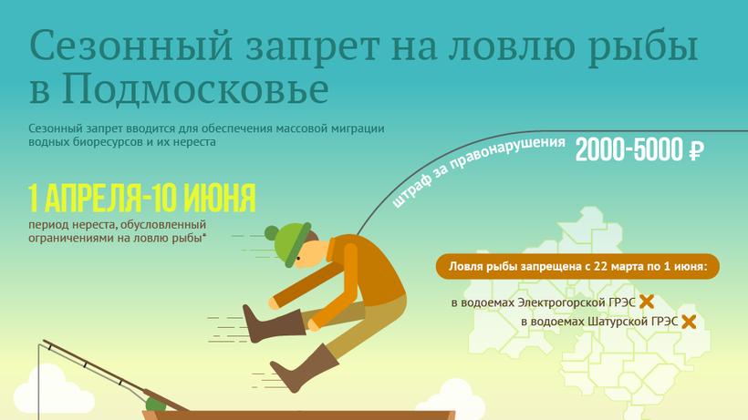Весенний запрет на рыбалку 2019 в московской области