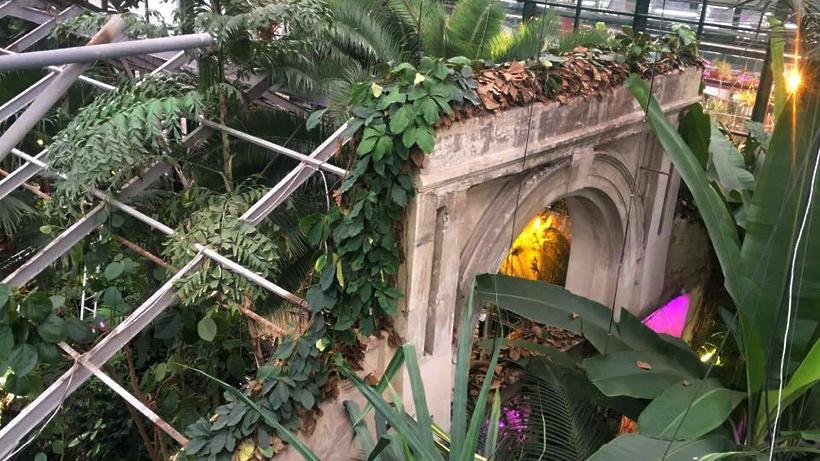 В «Аптекарском огороде» покажут исторический фасад оранжереи XIX века