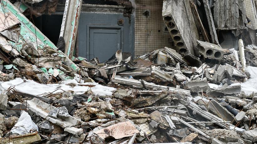 Жители Подольска попросили власти снести три дома, где поселились бомжи