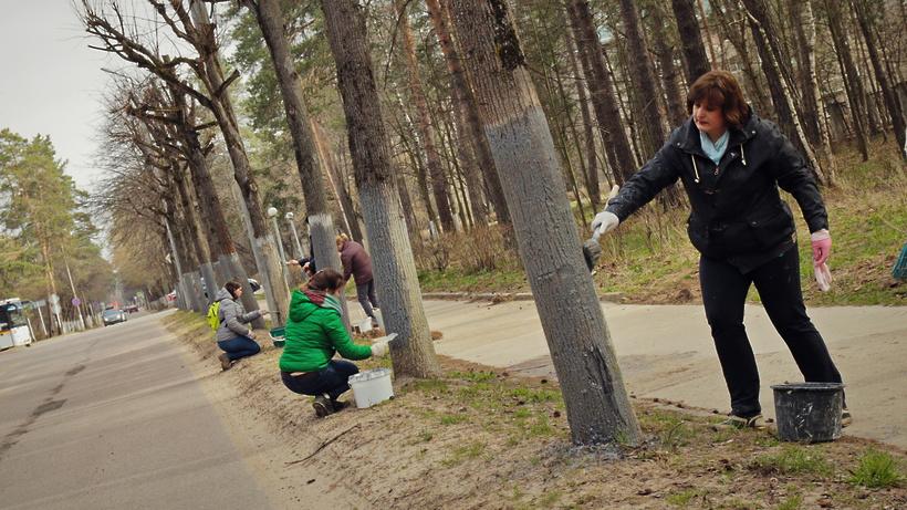 Свыше 700 тысяч человек приняли участие во втором субботнике в Подмосковье