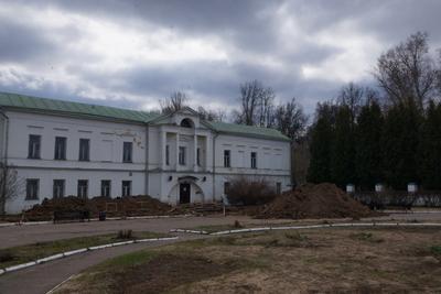 В Подольске активисты очистили парк усадьбы «Ивановское» от кустарников на субботнике
