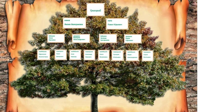Лекции и практика по составлению родословного дерева