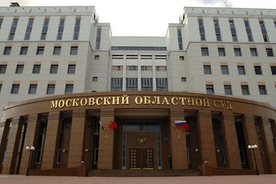 В Мособлсуде 1 марта рассмотрят апелляцию по делу о ДТП с мальчиком в Балашихе