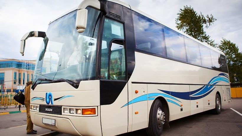 ВТеплом Стане запустилось автобусное движение из столицы вГерманию 19