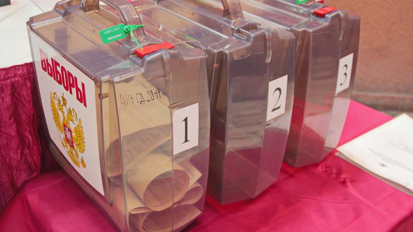 Более 4,8 тыс человек вошли в корпус наблюдателей за выборами при ОП Москвы