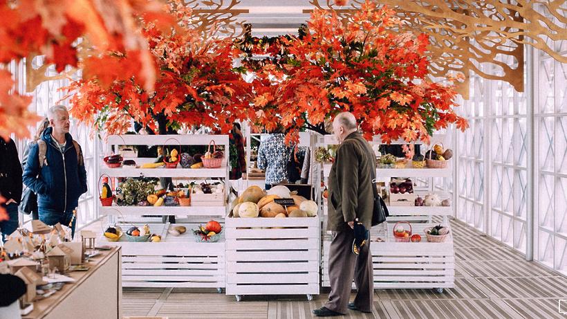 Нафестиваль «Золотая осень» в столицеРФ привезут 200 видов сыра