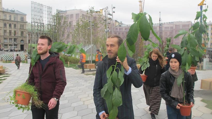 Рэпер Децл подарил парку «Зарядье» авокадо собственного производства