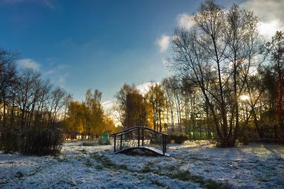 Первый снег выпал в Москве и Подмосковье