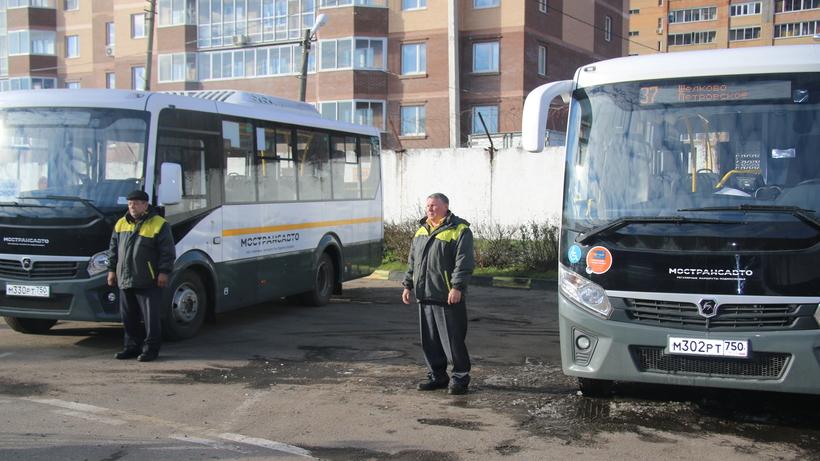 фото автобусов щелково виде пазла придутся