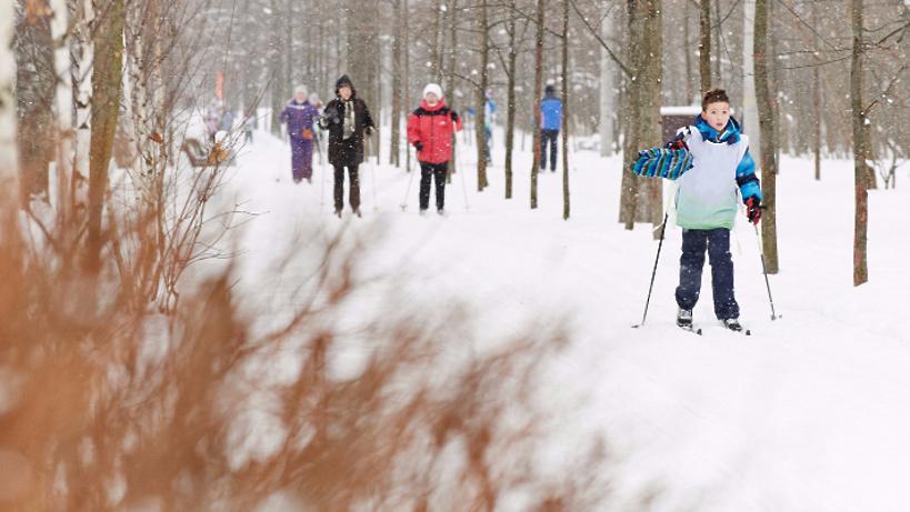 Впарках столицы появятся нетающие лыжные дороги