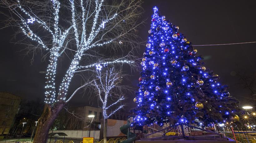 Областная акция «Добрая елка» стартовала вХимках