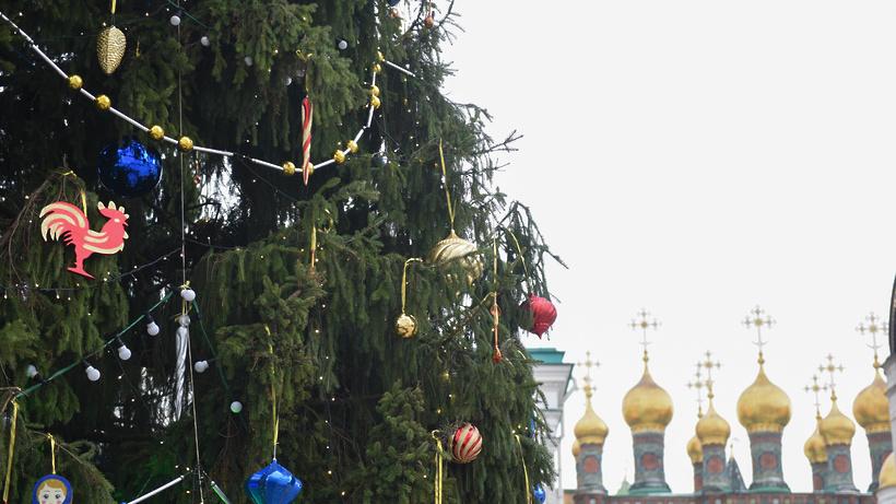 Брянск вошел втоп-10 самых известных мест новогоднего отдыха