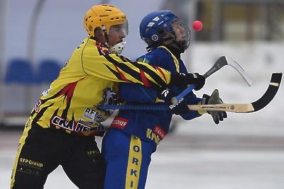 В Красногорске в воскресенье пройдет турнир по хоккею с мячом
