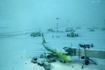 Почти 30 рейсов задержали и отменили в аэропортах Москвы утром в пятницу