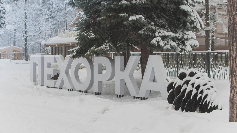 Праздничную программу проведут в парке «Пехорка» Балашихи 8 марта