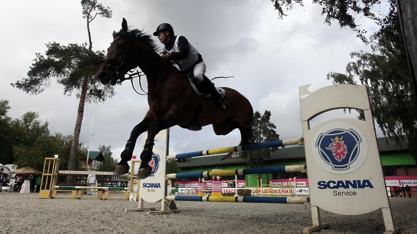 Онлайн‑занятия по теории конного спорта начнутся в Котельниках 24 марта