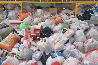 Мусор скопился на контейнерных площадках Королева из‑за сбоя в графике вывоза отходов