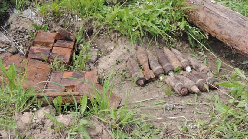 Боеприпас времен ВОВ нашли в лесу в Рузском округе