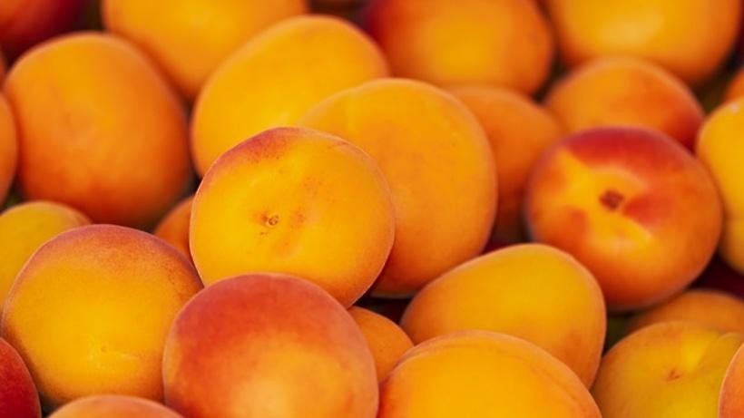 Россельхознадзор запретил ввоз встрану 18 тонн турецких персиков
