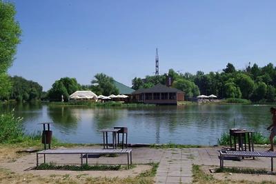 Семь парков благоустроили в Подмосковье