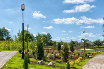 Делегация Подмосковья поделилась опытом благоустройства парков на конгрессе в Казани