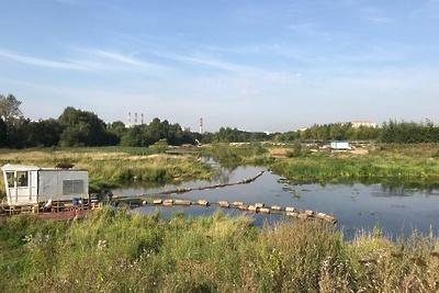 Реку Пехорку в Люберцах будут очищать от мусора в воскресенье