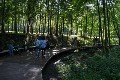 Снятие ограничений в Подмосковье: открытие парков с 29 мая и строительных гипермаркетов