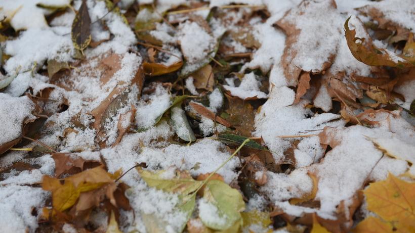 Снег прошел в поселке Красногорска во вторник