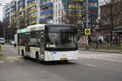 Автобусы в Домодедове временно начали ходить по расписанию воскресного дня