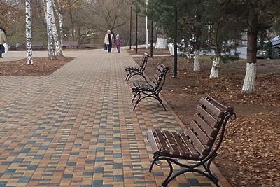 В лесу микрорайона Кутузово в Подольске создадут благоустроенный парк