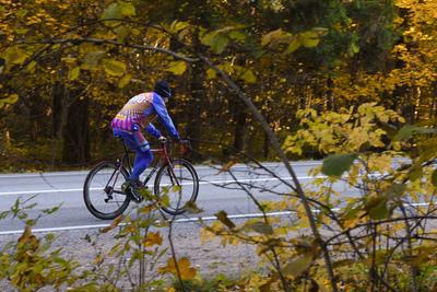 Уже более 6 тыс жителей Подмосковья приняли участие в опросе о развитии велоинфраструктуры