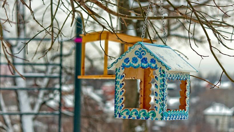 Экоакцию «Покорми птиц зимой» провели в парке Мытищ