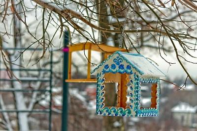 В парке Талалихина в Подольске повесили новые кормушки для птиц