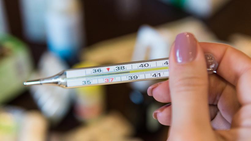 Прирост заболеваемости ОРВИ в Подмосковье сохраняется на уровне 10%