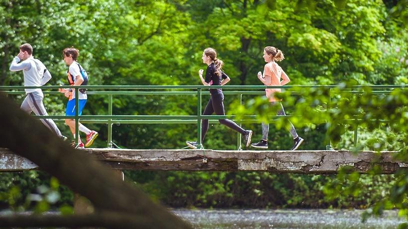 Любители бега могут посетить 9 оборудованных дорожек с тропами здоровья в парках Москвы