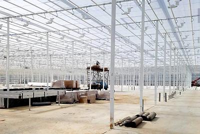 Строительство тепличного комплекса в Луховицах планируют завершить в 2020 году