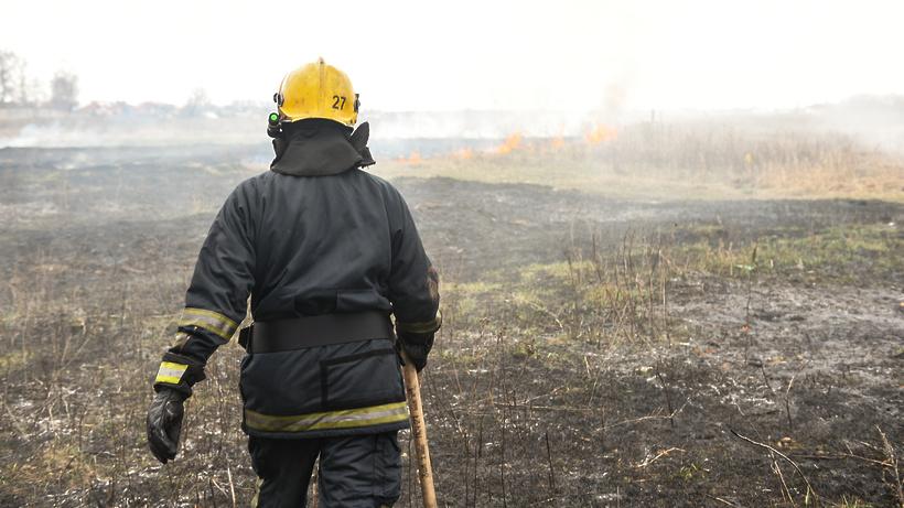 Площадь пожара на полях в Октябрьском Люберец составила 300 кв м