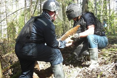 Боеприпасы времен ВОВ обнаружили в двух муниципалитетах Подмосковья