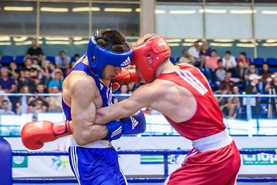 Спортсмены из Подмосковья стали победителями международных соревнований по боксу