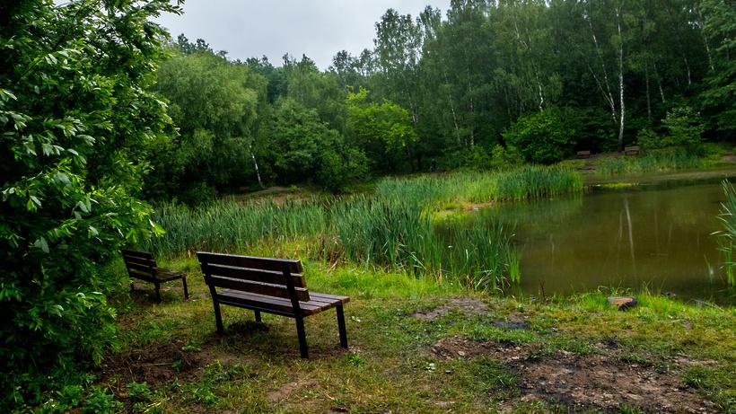 Природный заказник в Коломне и Луховицах увеличат более чем втрое