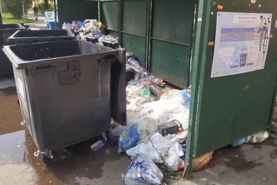 Общественники в Королеве нашли нарушения при вывозе мусора