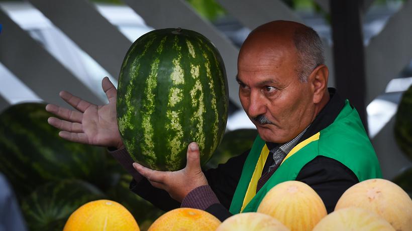 Отечественные арбузы и дыни в Мытищах можно будет купить с 1 августа