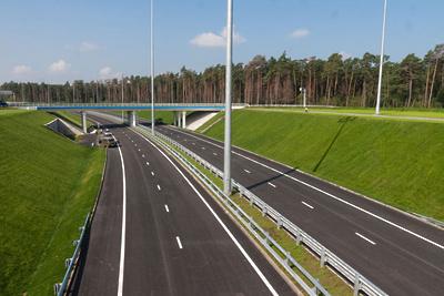 Более 3 тыс деревьев и кустарников посадят у вылетных магистралей в Подмосковье